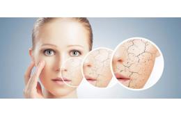 9 продуктов, которые борются с сухой, креповой кожей
